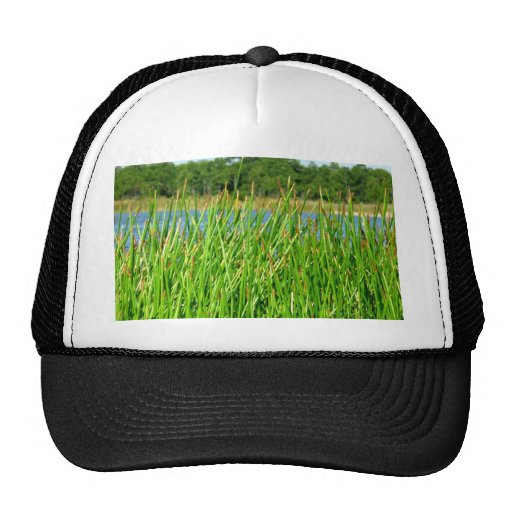 Reeds trees pond background mesh hats