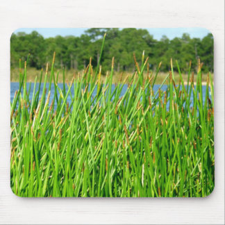 Reeds trees pond background mouse pad