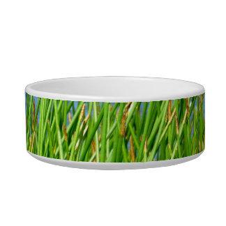 Reeds trees pond background pet bowls