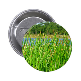 Reeds trees pond background pin