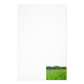 Reeds trees pond background stationery