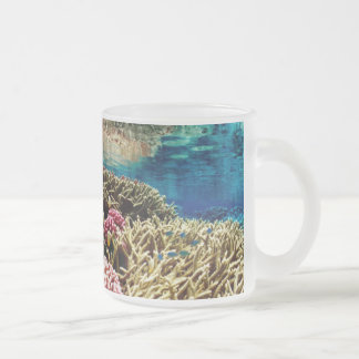 reef-386973  reef coral landscape colorful underwa frosted glass coffee mug
