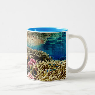 reef-386973  reef coral landscape colorful underwa Two-Tone coffee mug