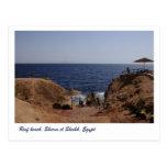 Reef beach, Sharm el Sheikh, Egypt Postcard