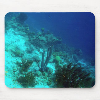 Reef Edge Mouse Pad