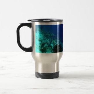Reef Edge Mugs