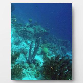 Reef Edge Plaque
