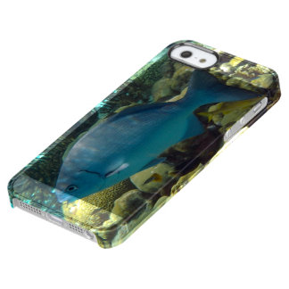 Reef Fish Clear iPhone SE/5/5s Case