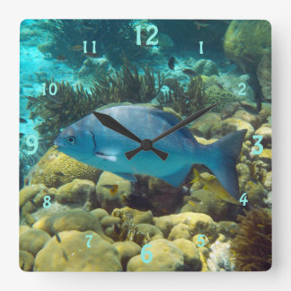 Reef Fish Square Wall Clock