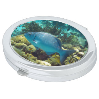Reef Fish Compact Mirror
