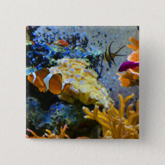 reef fish coral ocean button
