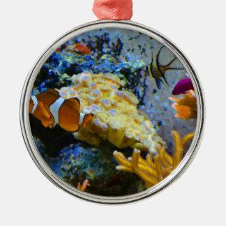 reef fish coral ocean metal ornament