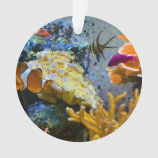 reef fish coral ocean ornament