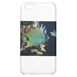 Reef Fish Cover For iPhone 5C
