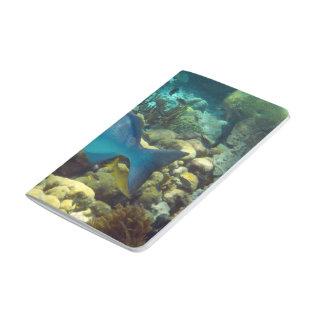 Reef Fish Journal