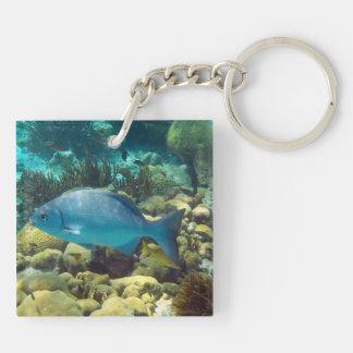 Reef Fish Keychain