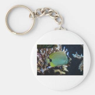 Reef Fish Basic Round Button Keychain