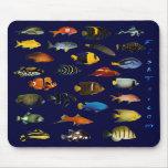 Reef Fish Mousepad