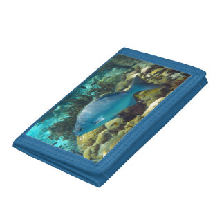Reef Fish Trifold Wallet