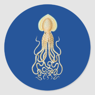 Reef Octopus Sticker