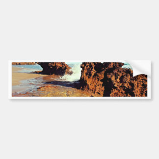 reef on the seashore bumper sticker