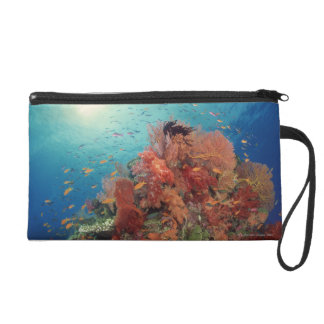 Reef scenic of hard corals , soft corals 2 wristlet purse