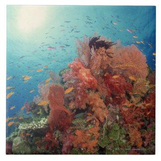 Reef scenic of hard corals , soft corals 2 ceramic tile