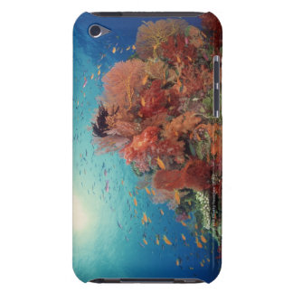 Reef scenic of hard corals , soft corals 2 iPod touch case