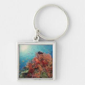 Reef scenic of hard corals , soft corals 2 keychain
