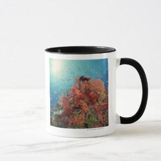 Reef scenic of hard corals , soft corals 2 mug