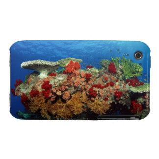 Reef scenic of hard corals , soft corals Case-Mate iPhone 3 case