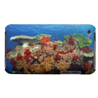 Reef scenic of hard corals , soft corals Case-Mate iPod touch case