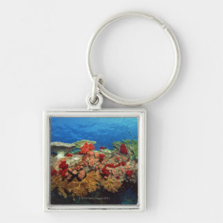 Reef scenic of hard corals , soft corals keychain