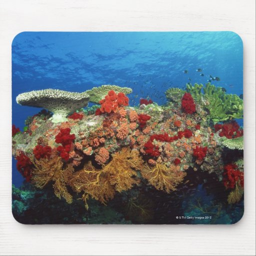 Reef scenic of hard corals , soft corals mousepads