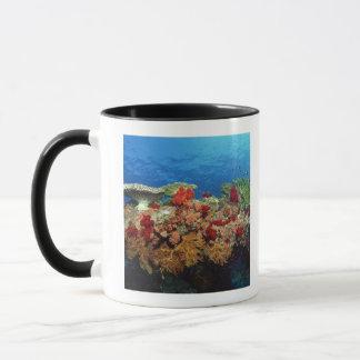Reef scenic of hard corals , soft corals mug