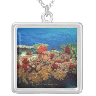 Reef scenic of hard corals , soft corals necklaces