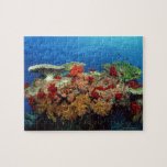 Reef scenic of hard corals , soft corals jigsaw puzzles