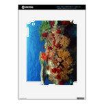 Reef scenic of hard corals , soft corals iPad 3 skin