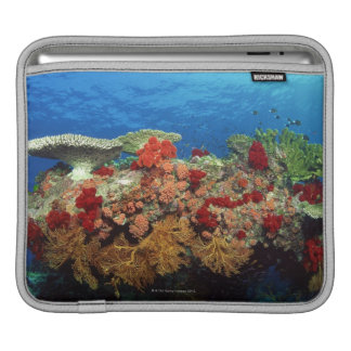 Reef scenic of hard corals , soft corals sleeve for iPads