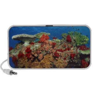 Reef scenic of hard corals , soft corals mini speakers