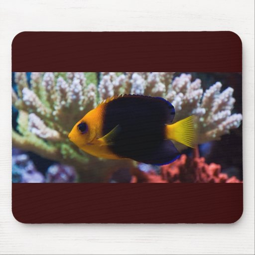 Reef Serenity Mousepad