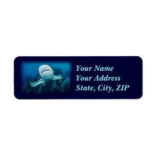 Reef Shark Address Label