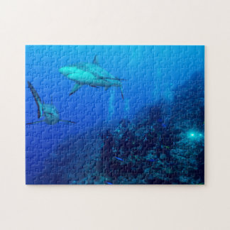 Reef Shark and Divers Jigsaw Puzzle