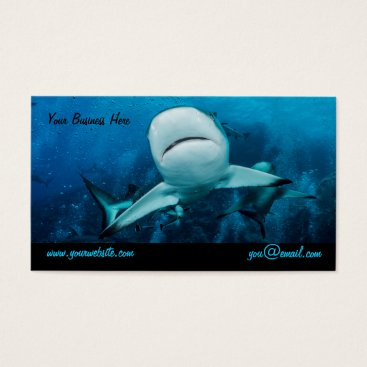 Professional Business Reef Shark Business Card