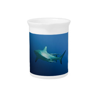 Reef Shark Great Barrier Reef Coral Sea Beverage Pitcher