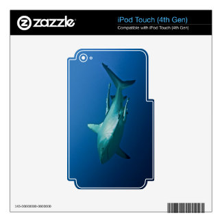 Reef Shark Great Barrier Reef Coral Sea iPod Touch 4G Skins