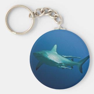 Reef Shark Great Barrier Reef Coral Sea Keychain