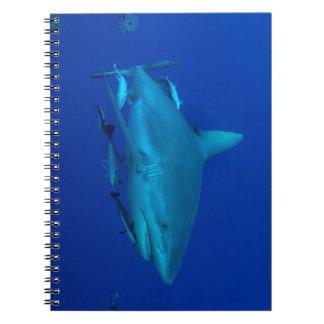 Reef Shark Great Barrier Reef Coral Sea Spiral Notebook