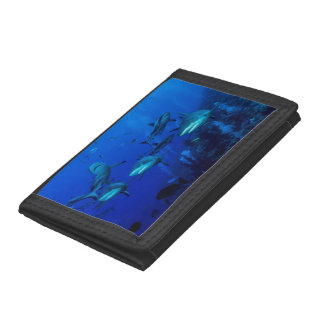 Reef Shark Great Barrier Reef Coral Sea Trifold Wallets
