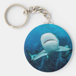 Reef Shark Keychain